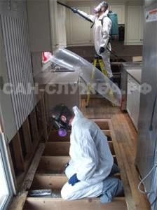 Выведение клопов из частного дома
