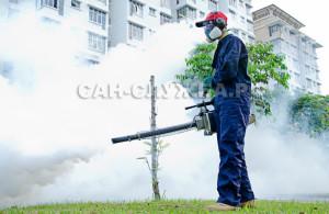 Обработка от клещей и комаров на территории города