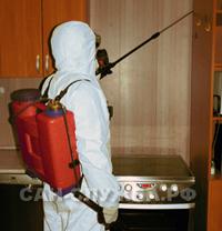 Дезинсекция тараканов, уничтожение тараканов в квартире, борьба с тараканами, уничтожение тараканов в квартире