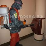 Дезинсекция и дератизация мусоропровода в подъездах