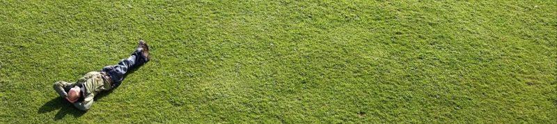 Дезинсекция и профилактика клещей на садовом и дачном участке