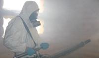 генератор горячего тумана от клопов, уничтожение постельных клопов методом горячего тумана, горячий туман от постельных клопов