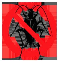 дезинсекция квартиры от насекомых; заказать дезинсекцию квартиры от постельных клопов и тараканов; обработка квартиры от всех видов насекомых